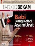 Edisi 14